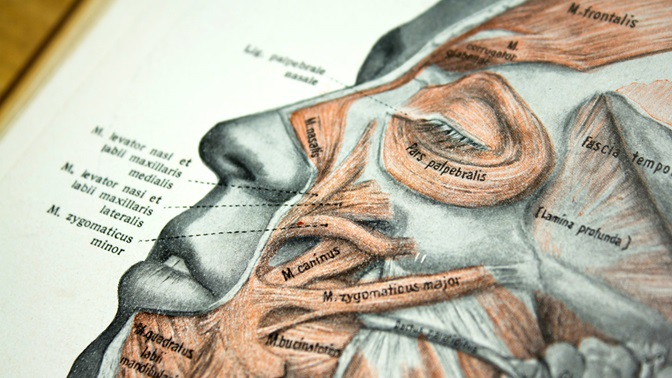 Masterstudiengang Medizin an der Universität St.Gallen